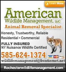 Ameriacn Wildlife Management, LLC