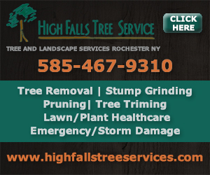 High Falls Tree Service LLC