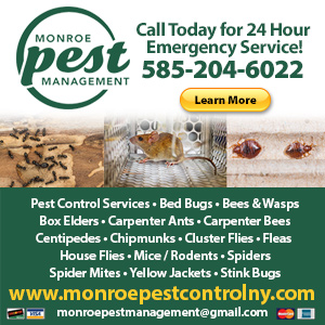 Monroe Pest Management