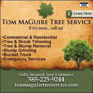 Tom MaGuire Tree Service