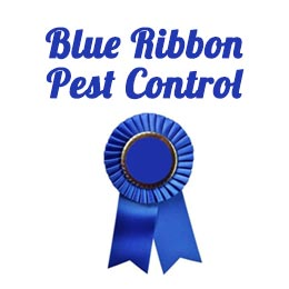 Blue Ribbon Pest Control Inc